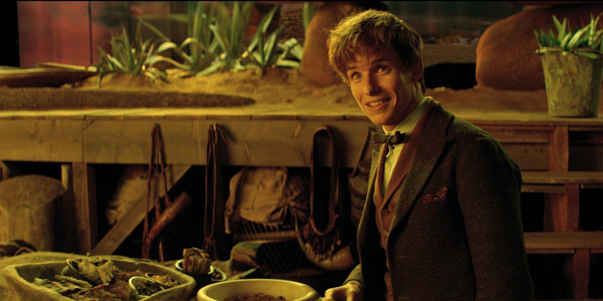 Newt Scamander played by Eddie Redmayne (Courtesy of Warner Bros Studios)