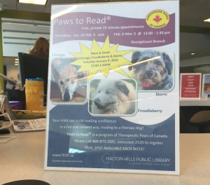 Top right is a picture of Pauline's dog, Storm. On a poster advertising her reading with children program.